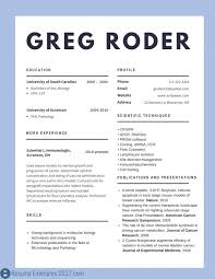 Professional Resume Examples 2017 Best Cv Examples 2018 To Try