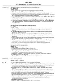 Director Resume Sample Marketing Director Resume Examples Examples of Resumes 61