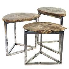 Organic Modern Furniture Coffee Table Organic Modern Petrified Wood Side Table With