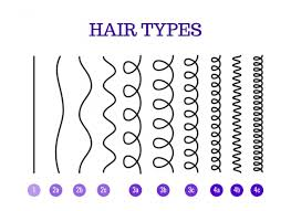 Andre Walker Hair Chart Whats My Hair Type The Whole System Is B S