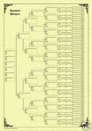 7 Generation Pedigree Chart Details About Family Tree Chart 7 Generation Pedigree Parchment
