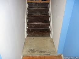 basement stairs looking down.  Down The Old Stairs Intended Basement Stairs Looking Down W