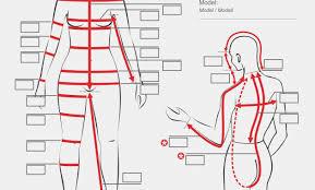 body measurement chart for men male body measurement chart stock vector art body