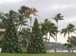 401 Best Mele Kalikimaka  Hawaii For The Holidays Images On Christmas Tree Hawaii
