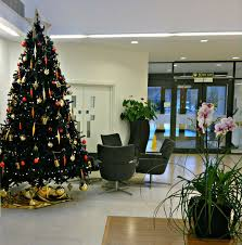 office christmas trees. GALLERY Office Christmas Trees A