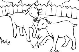 Small Picture Goats Coloring Pages Colouring For Kids Goat Coloring Page In