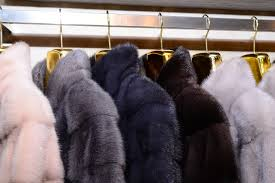 what s the big deal about mink fur