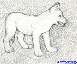 Small Picture Draw a Wolf Puppy Step by Step Drawing Sheets Added by