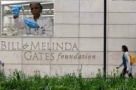 Everything to know about the Bill & Melinda Gates Foundation