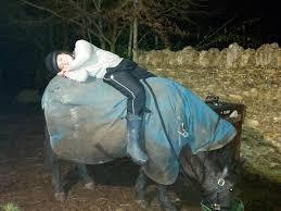 Virgin Money Giving   White Horse Surveyors Team - Big Sleep Out