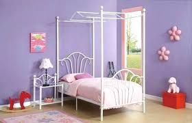 Canopies For Twin Bed Girls Twin Bed Canopy Bedroom Fabulous Frames ...