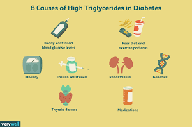 Diet Chart For Type 2 Diabetes In Hindi 10 Causes Of High Triglycerides In Diabetes