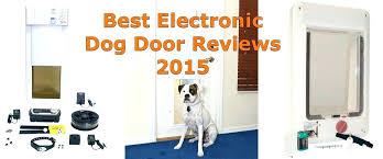 extra large pet door electronic dog door medium size of ideal pet doors extra large sliding