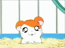 cute animal animated gif. Unique Gif Cute Animated Hamster Gif  Furry Talk Intended Animal