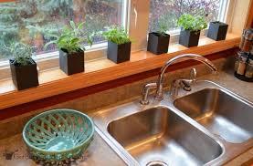 herbs on kitchen window ledge