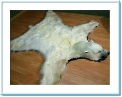 white bear rug polar fur traders taxidermy for faux with head fake large accent f
