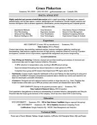Data Analyst Resume Sample Monster Com Sap Master Management Dataan