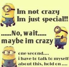 Image result for craziness word images