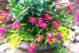 patio flower ideas full size of patio flower pots ideas outside planting outdoor container small space patio flower ideas
