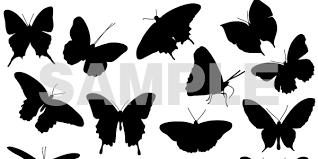 蝶々のイラストベクターフリー素材リアルな蝶々から繊細なデザイン性
