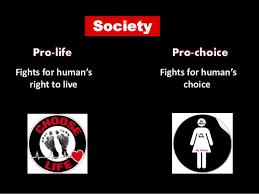 abortion pro choice vs pro life essay essay help online essay  camille paglia feminists have abortion wrong trump