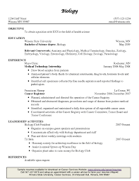 examples of resumes great executive resume example sample cfo great executive resume example sample cfo resume example of inside example of a great resume