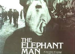 elephant man essay the elephant man essay