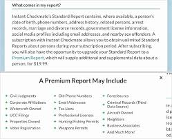 Criminal Record Template Criminal Background Check Form Template Design Template Example