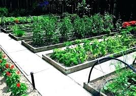 raised vegetable garden ideas raised bed garden layout raised bed vegetable garden raised garden