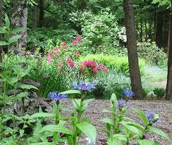 Small Picture Gallery Serenity Gardens Design