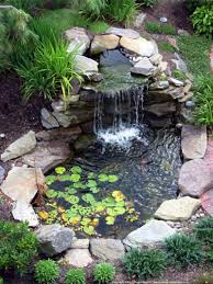 Backyard Ponds Backyard Pond Designs Fish Pond Gardens Garden Features And