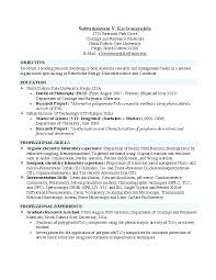 Resume Template For College Graduate Wonderful Resume Examples College Students No Experience Good Resumes