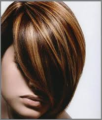 dark brown hair with light brown highlights beautiful short hairstyles with highlights and lowlights unique best