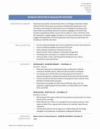 Cvs Store Manager Resume Loveable Senior Executive Resume Template