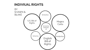 Individual Rights By Shawn Mika On Prezi Next
