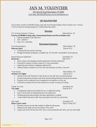 Resume Sample Key Skills Valid Skill For Resume Examples Resume