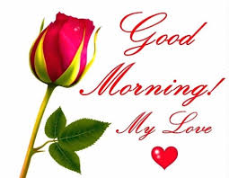 love red roses pics good morning