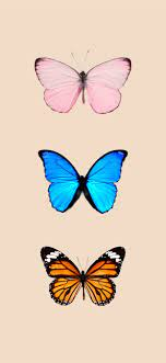 Butterfly background iPhone iPhone X ...