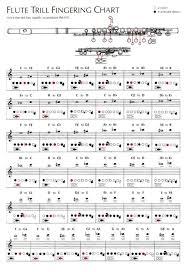 8 Hole Carnatic Flute Finger Chart 71 Ageless A Flute Fingering Chart
