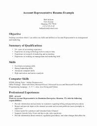 Resume Bullets Beautiful Bullet Points In Resume Generic Flag Unique