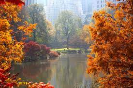 Autumn Central Park New York Wallpapers ...