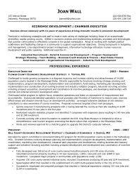 Sample Resume Executive Summary Samples Charter School Director