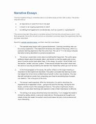 Interview Essay Examples Free Unique 013 Example How To Write An