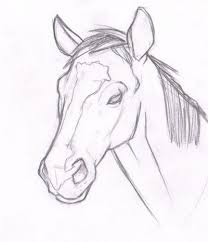 400x466 horse head drawings realistic coloring pages howwhat to draw