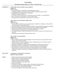 Management Resume Collateral Management Resume Samples Velvet Jobs 75