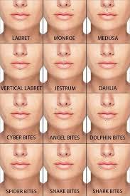 Lip Piercings Guide In 2019 Piercings Facial Piercings