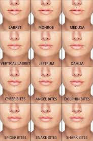 Facial Piercing Chart Lip Piercings Guide In 2019 Piercings Facial Piercings