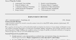Resume Order Of Sections Order Of Sections On A Resume Profesional Resume Template 14