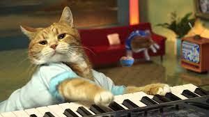 R.I.P. Bento, the Keyboard Cat ...