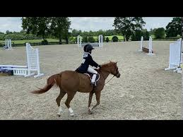 Lucy Sweetnam and Yet Another Karacter 2020 Virtual Pony Finals - YouTube